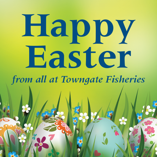 Happy Easter from all at Towngate Fisheries, Idle
